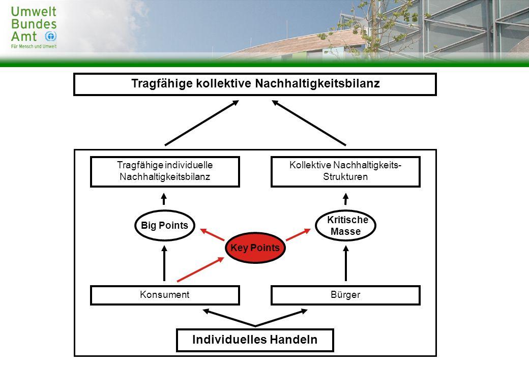 Tragfähige kollektive Nachhaltigkeitsbilanz Individuelles Handeln