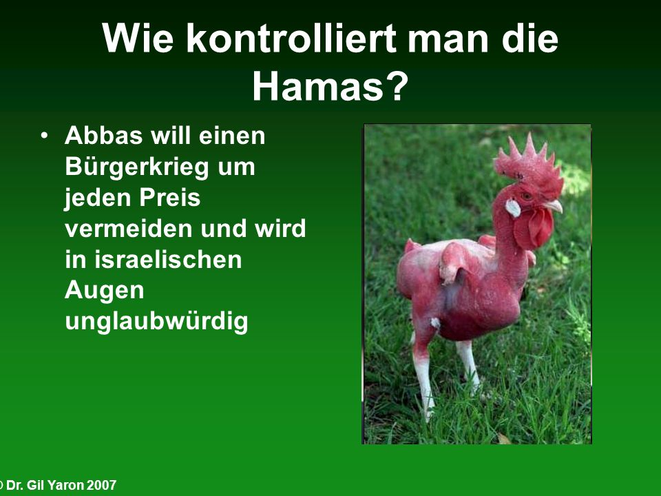 Wie kontrolliert man die Hamas