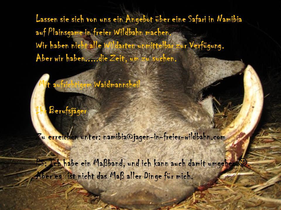Lassen sie sich von uns ein Angebot über eine Safari in Namibia