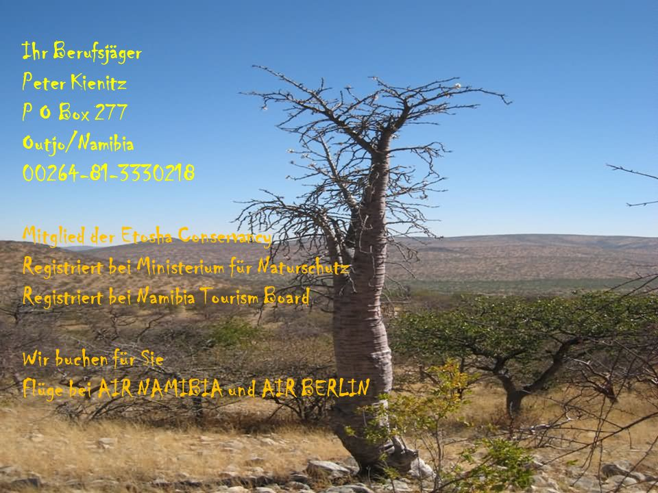 Ihr Berufsjäger Peter Kienitz. P O Box 277. Outjo/Namibia. 00264-81-3330218. Mitglied der Etosha Conservancy.