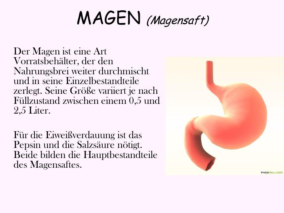 MAGEN (Magensaft)