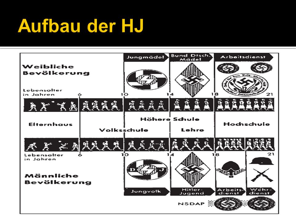 Aufbau der HJ