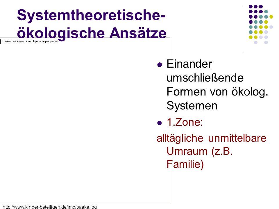 Systemtheoretische-ökologische Ansätze