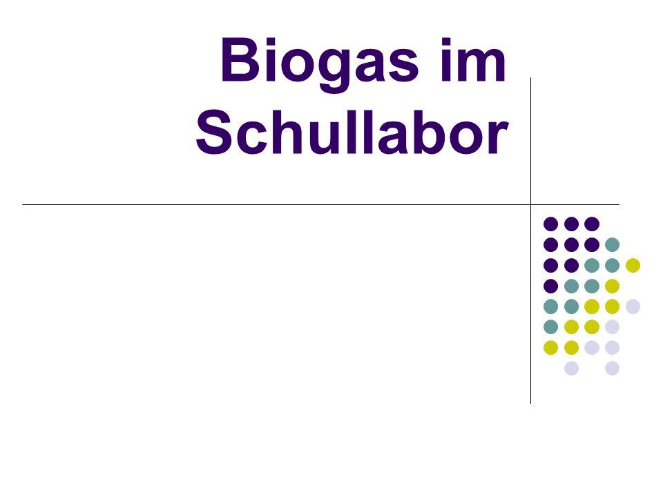 Biogas im Schullabor