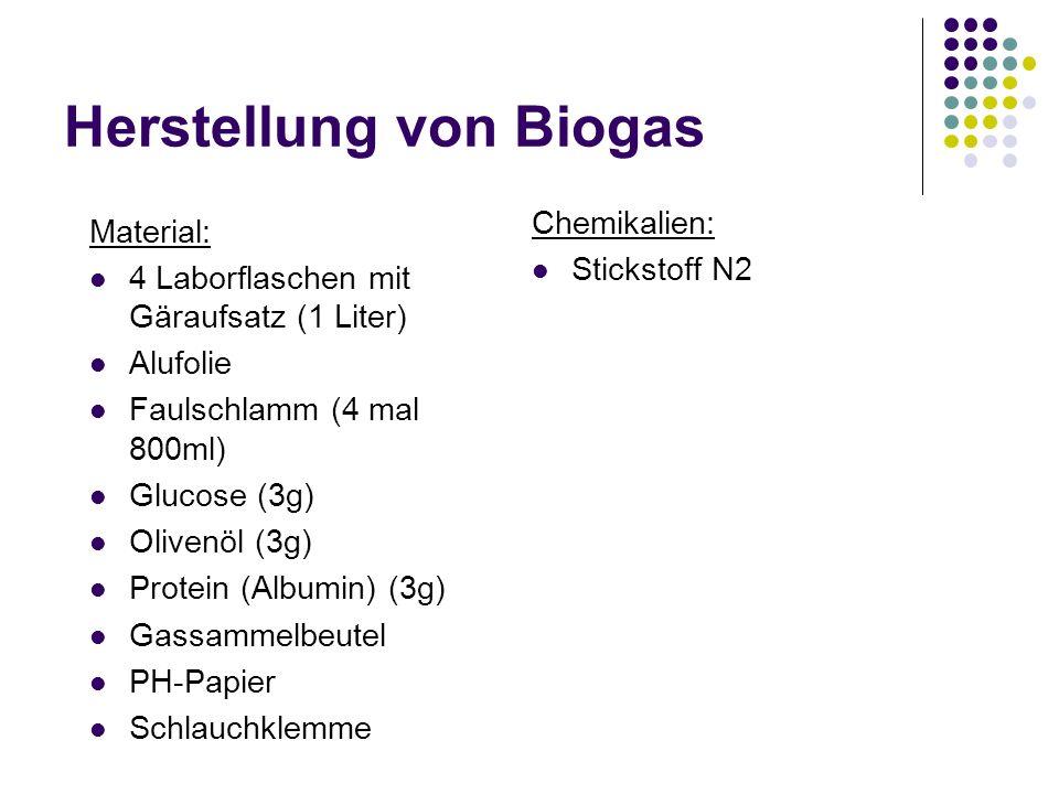 Herstellung von Biogas
