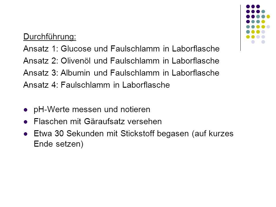 Durchführung: Ansatz 1: Glucose und Faulschlamm in Laborflasche. Ansatz 2: Olivenöl und Faulschlamm in Laborflasche.