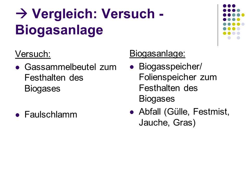  Vergleich: Versuch - Biogasanlage