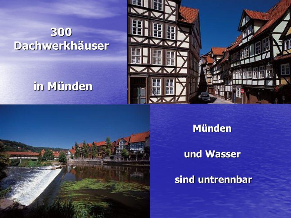300 Dachwerkhäuser in Münden
