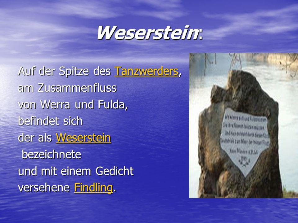 Weserstein: Auf der Spitze des Tanzwerders, am Zusammenfluss
