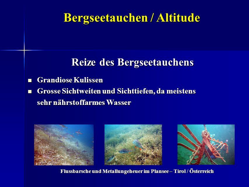 Bergseetauchen / Altitude