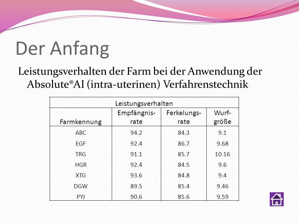 Der Anfang Leistungsverhalten der Farm bei der Anwendung der Absolute®AI (intra-uterinen) Verfahrenstechnik.