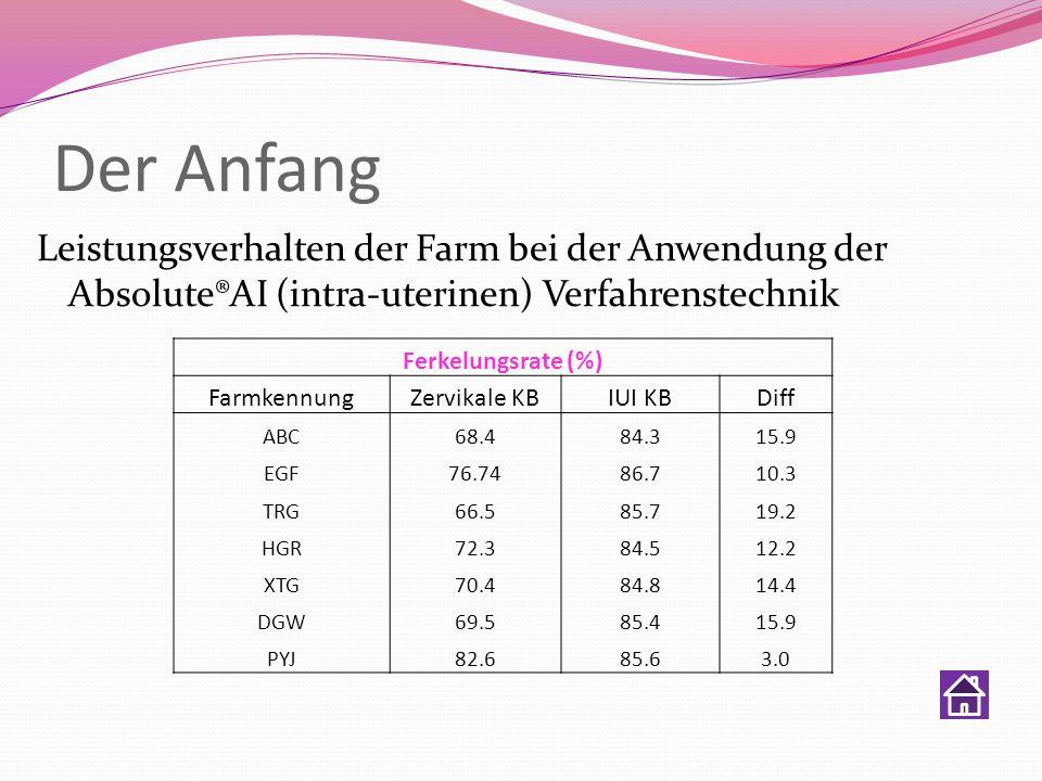 Der AnfangLeistungsverhalten der Farm bei der Anwendung der Absolute®AI (intra-uterinen) Verfahrenstechnik.