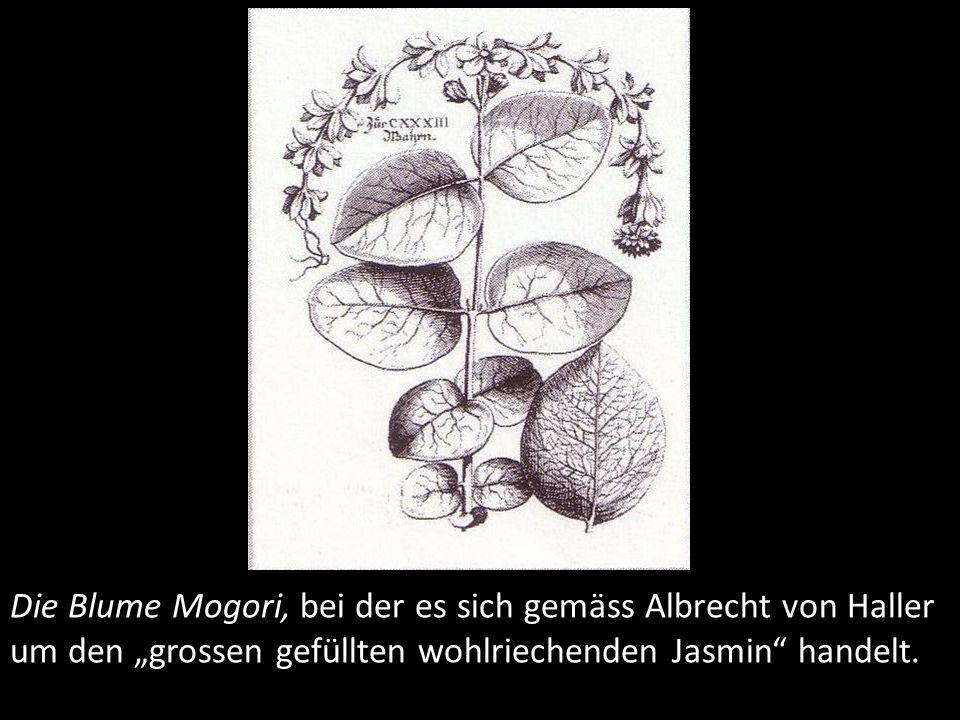 """1742 bringt Haller den illustrierten Katalog der Pflanzen der Schweiz heraus, der als erste umfassende Flora der Schweiz und als sein grösstes botanisches Werk gilt. Seinen Weg sah er im Forschen von Spezialgebieten. Für ihn war selbstverständlich, dass das neue Wissen auf empirischer, experimenteller Forschung basieren musste und nicht auf theoretischer Diskussion von ungesicherten Annahmen. Er selbst formulierte es so: """"Wir sind von Natur aus nicht zur Universalität geschaffen ."""