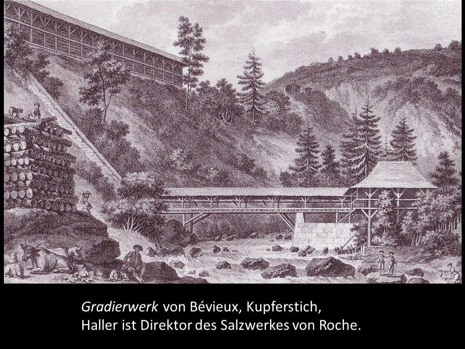 1758 wird er für sechs Jahre Direktor der Bernischen Salzwerke von Roche und hat so wieder vermehrt Gelegenheit zum Botanisieren.