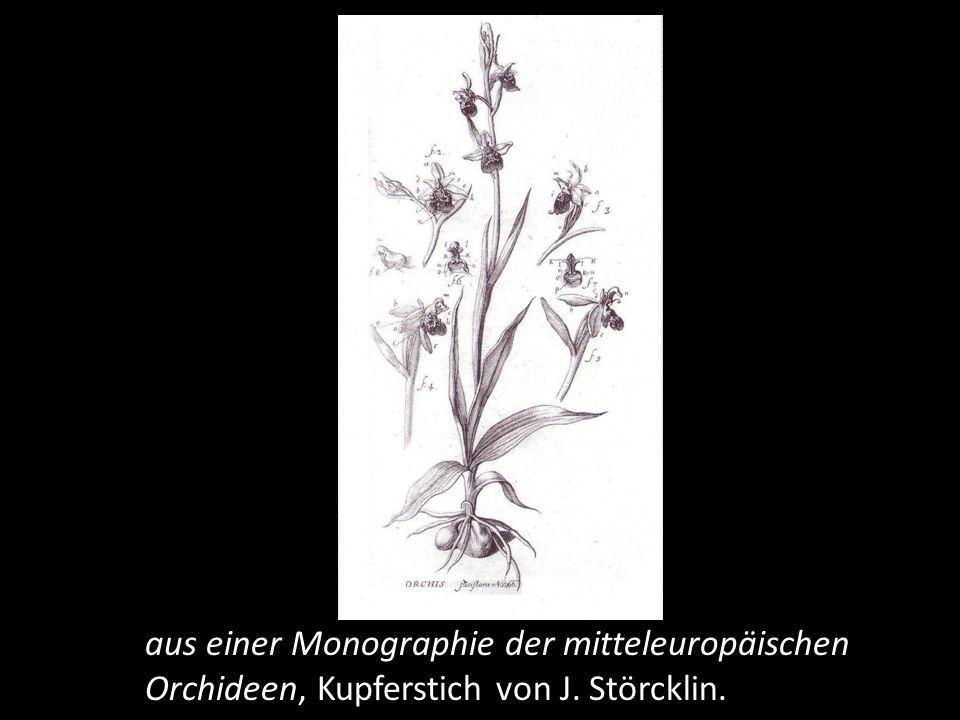 Die zweite Auflage seiner Schweizer Flora erscheint und eine Monographie der Orchideen Europas. Später folgen weitere botanischen Schriften und die Bibliotheca Botanica, ein kommentiertes Verzeichnis des gesamten botanischen Schrifttums jener Zeit.