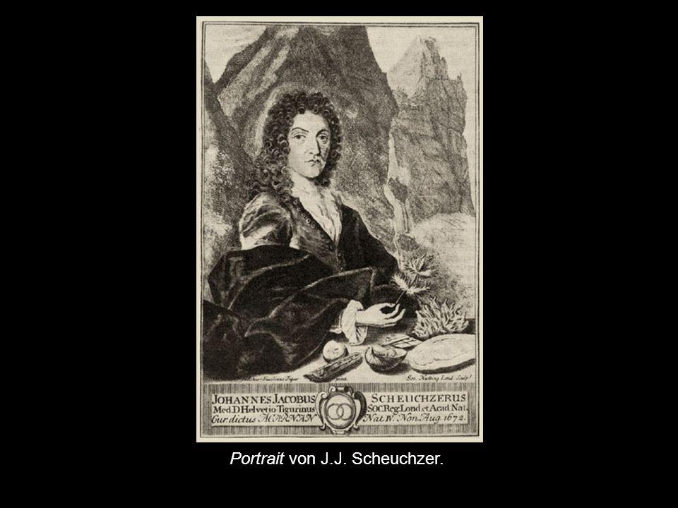 Portrait von J.J. Scheuchzer.