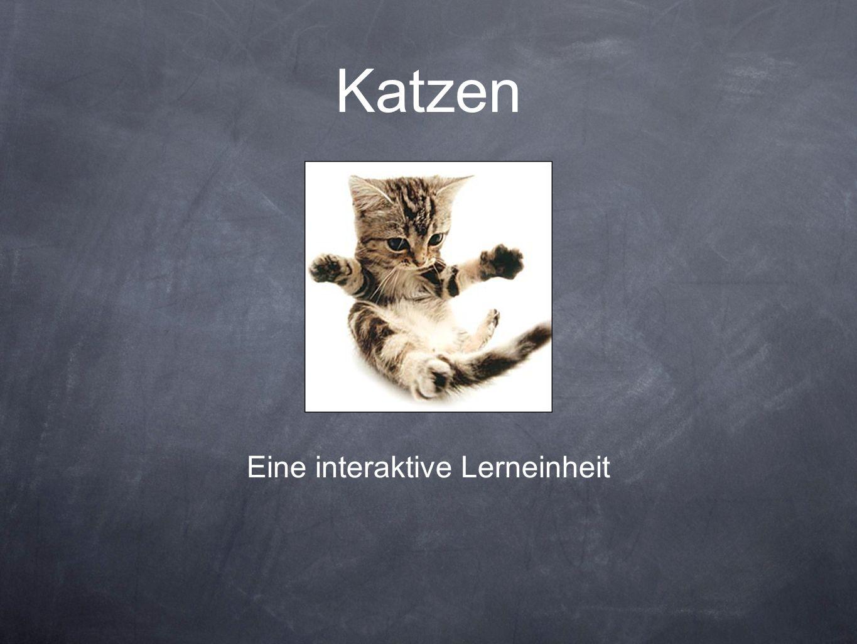 Eine interaktive Lerneinheit