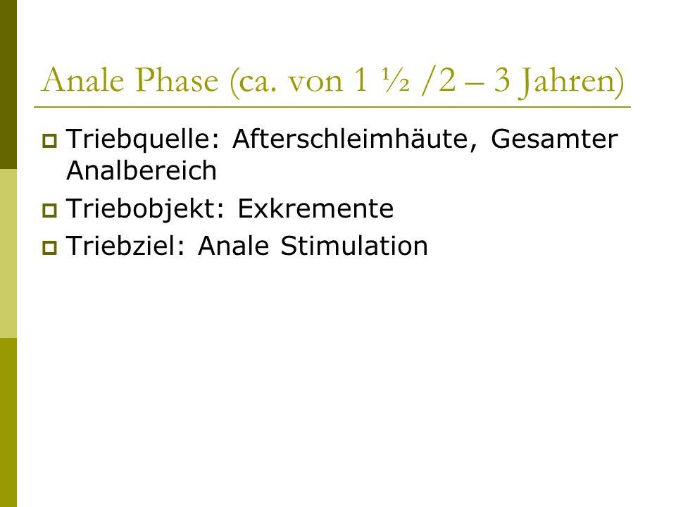 Anale Phase (ca. von 1 ½ /2 – 3 Jahren)