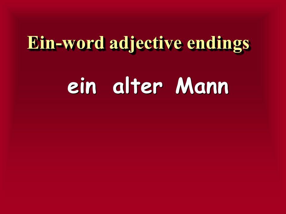 Ein-word adjective endings
