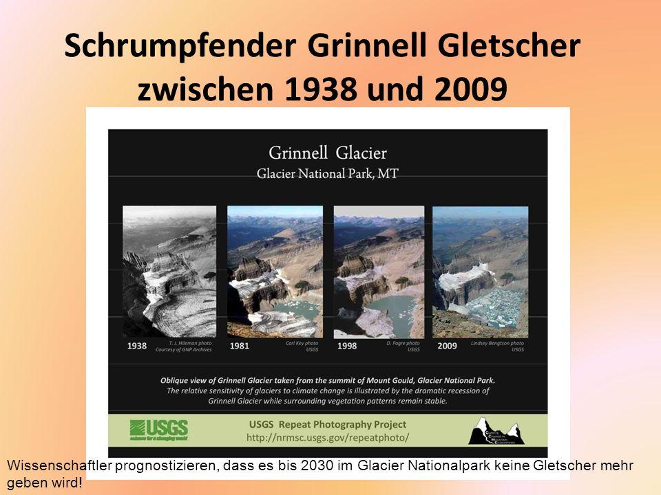 Schrumpfender Grinnell Gletscher zwischen 1938 und 2009