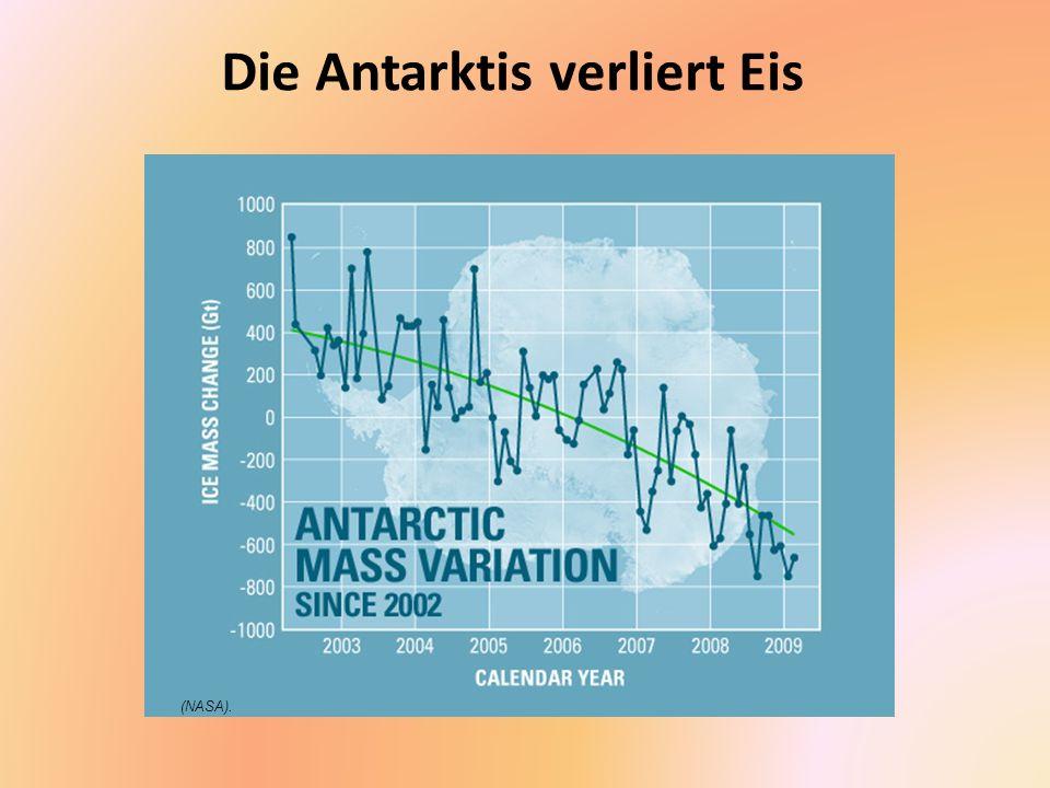 Die Antarktis verliert Eis