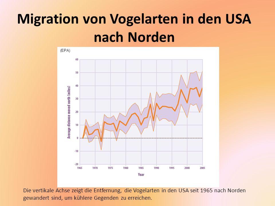 Migration von Vogelarten in den USA nach Norden
