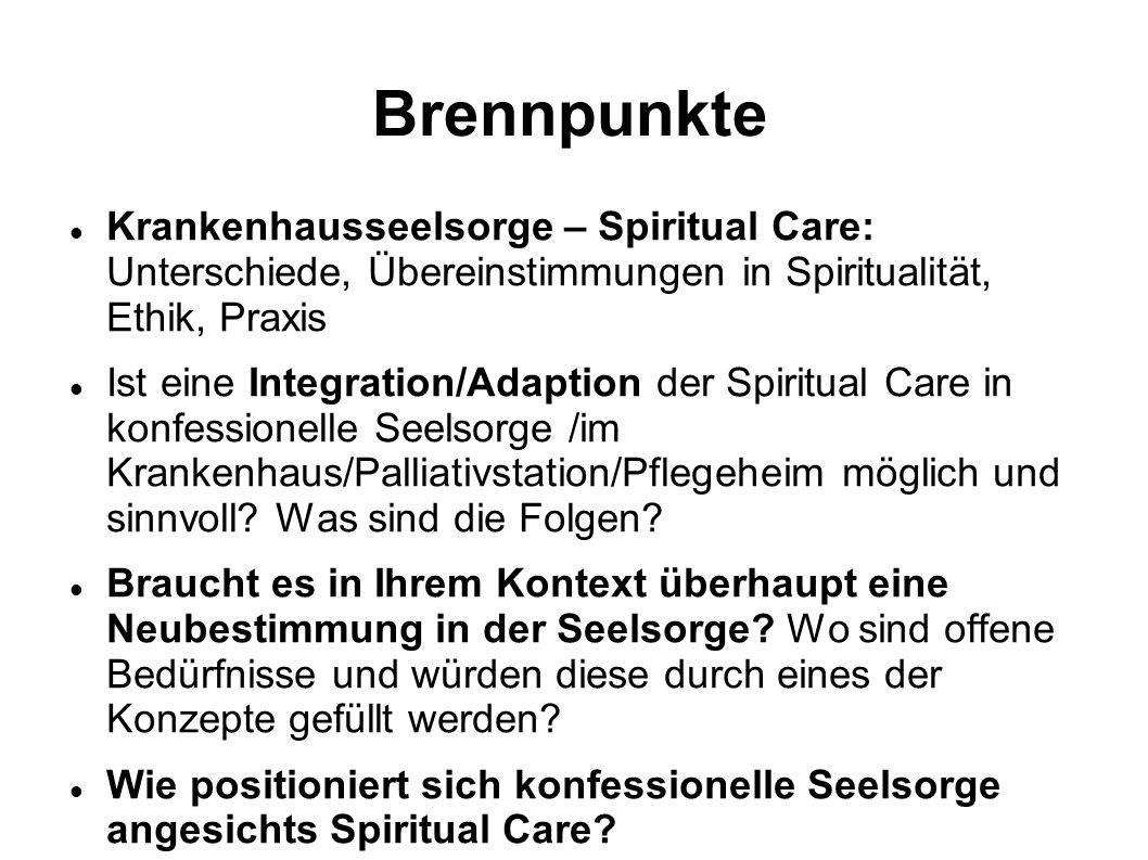 Brennpunkte Krankenhausseelsorge – Spiritual Care: Unterschiede, Übereinstimmungen in Spiritualität, Ethik, Praxis.