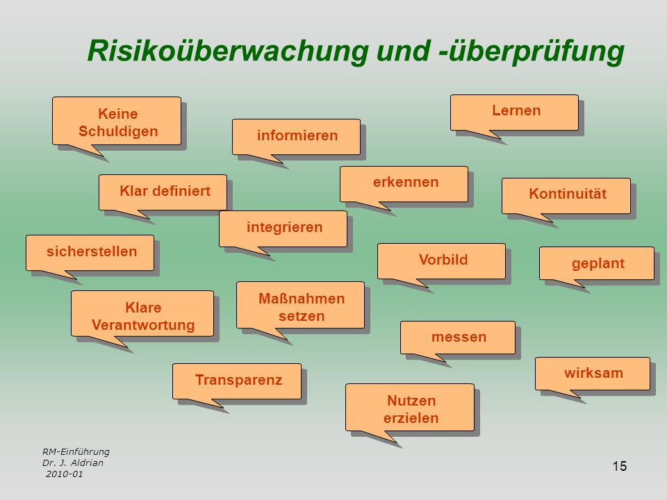 Risikoüberwachung und -überprüfung