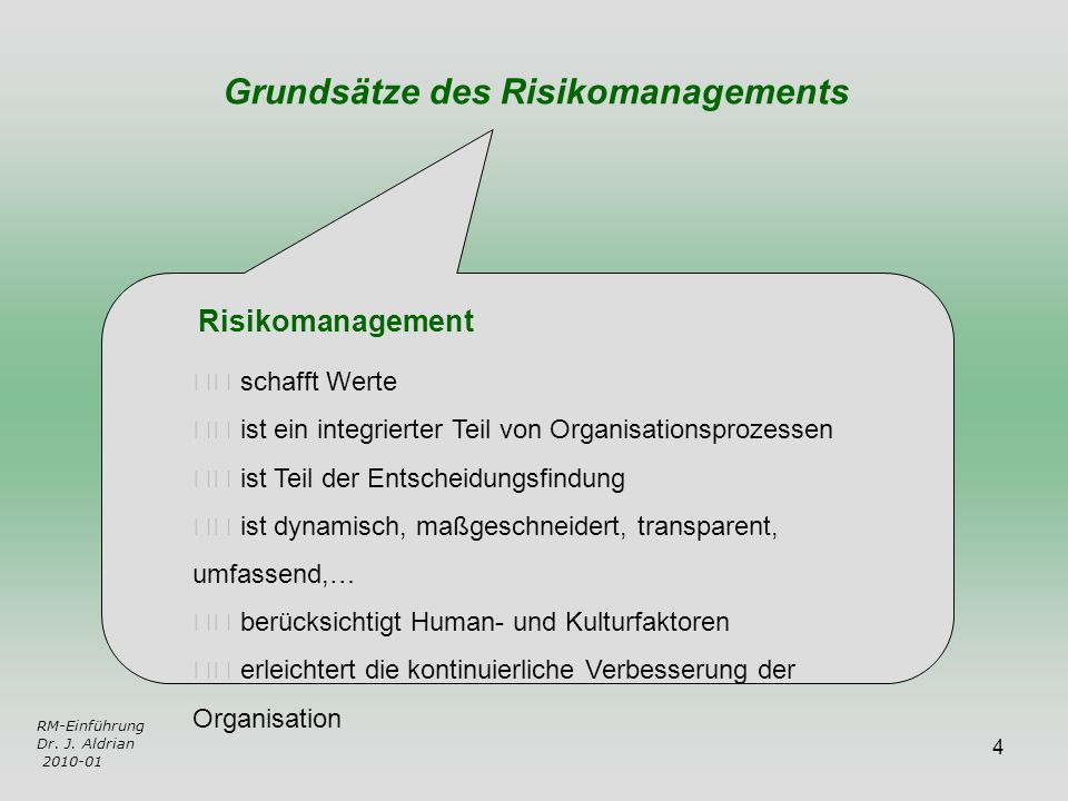 Grundsätze des Risikomanagements