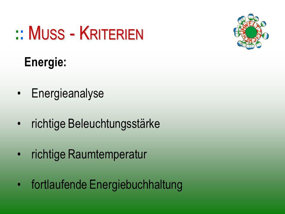 :: MUSS - KRITERIEN Energie: Energieanalyse