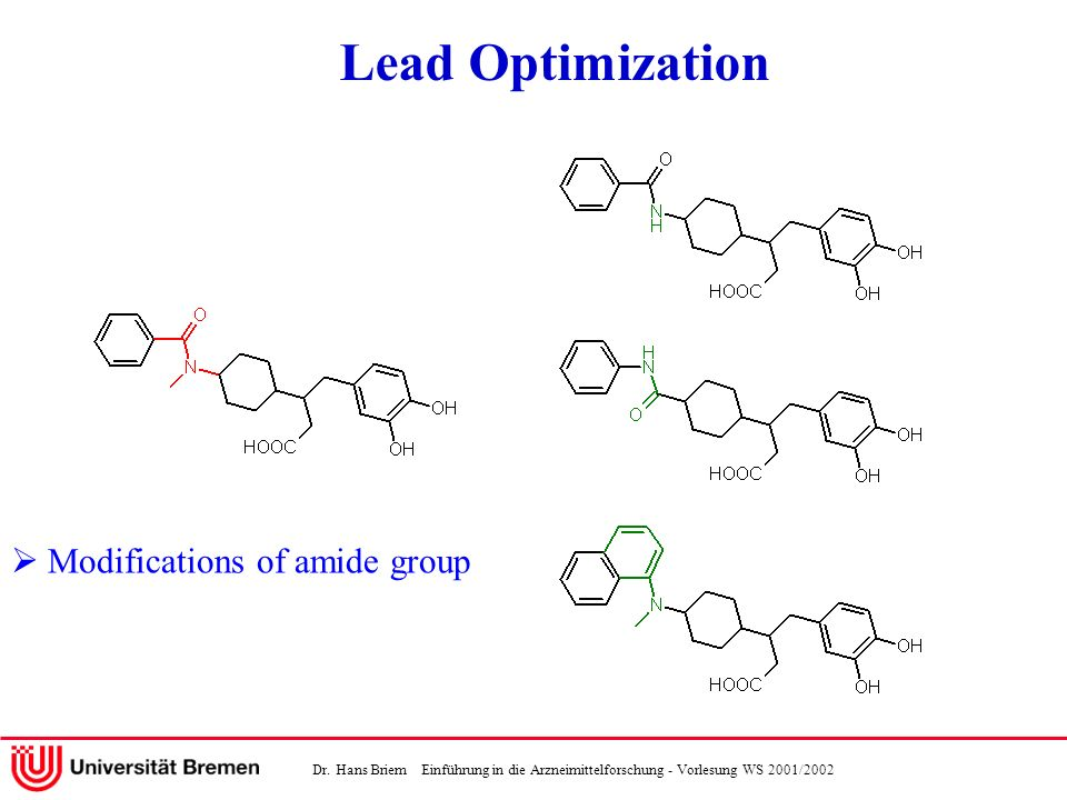 Lead Optimization  Modifications of amide group