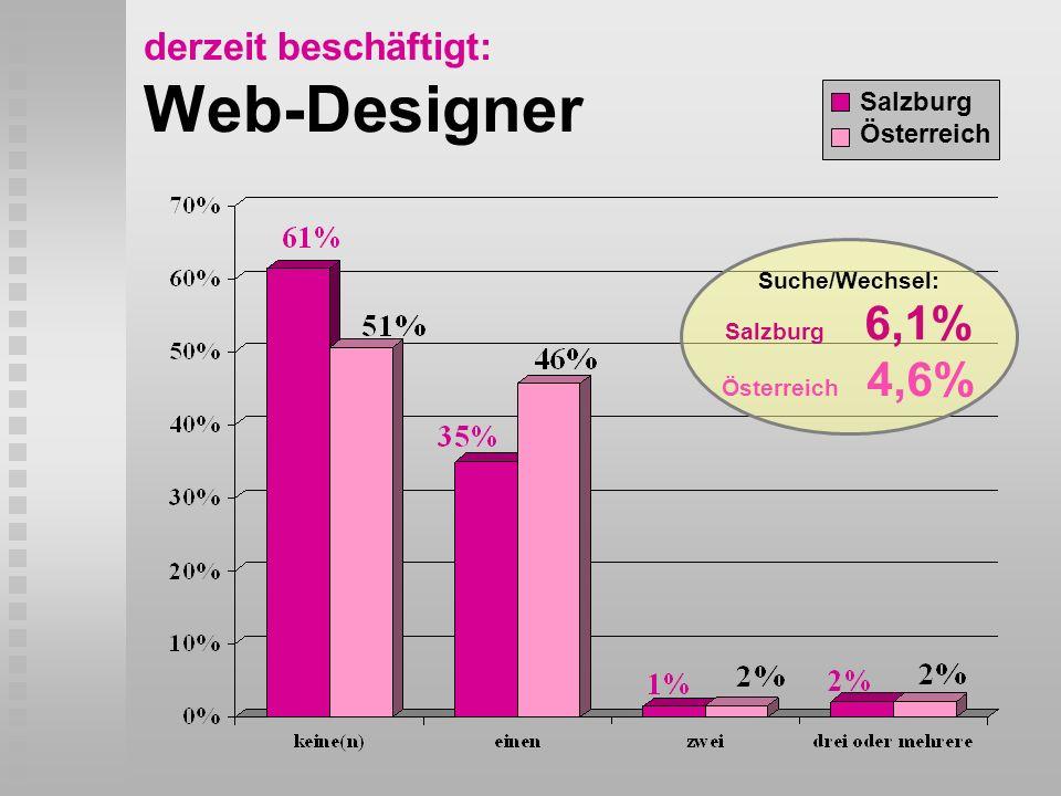 derzeit beschäftigt: Web-Designer