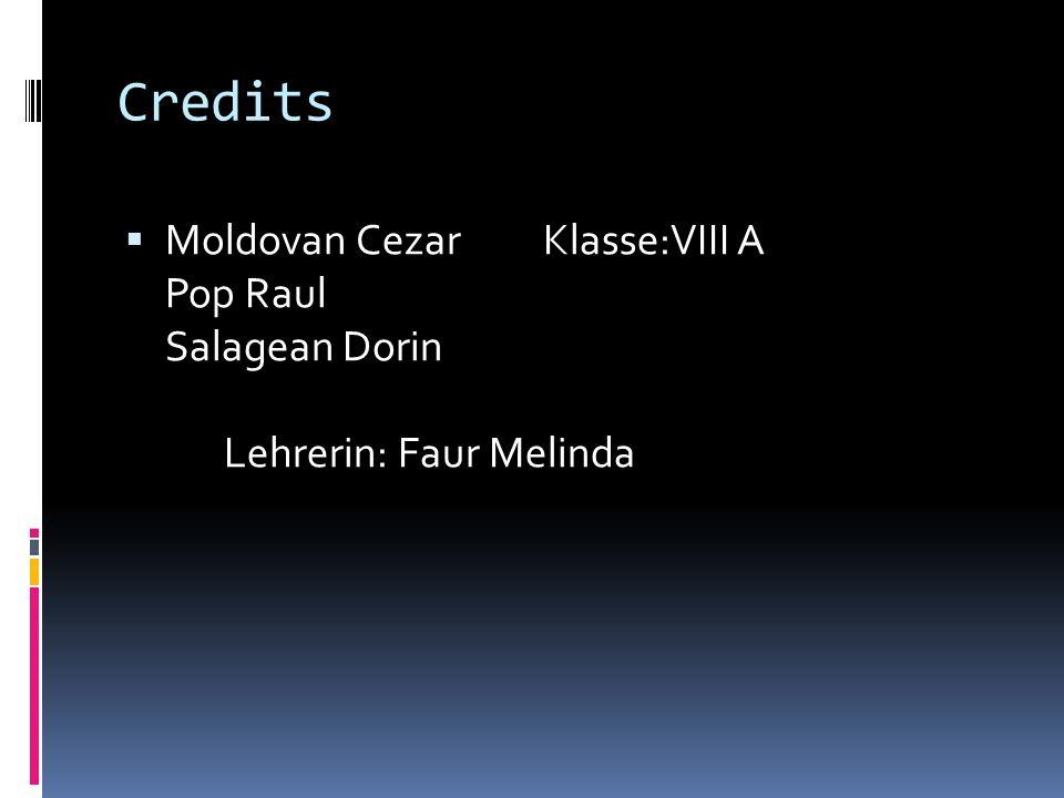 Credits Moldovan Cezar Klasse:VIII A Pop Raul Salagean Dorin Lehrerin: Faur Melinda.