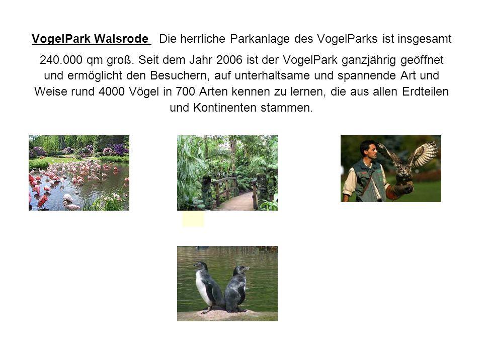 VogelPark Walsrode Die herrliche Parkanlage des VogelParks ist insgesamt 240.000 qm groß. Seit dem Jahr 2006 ist der VogelPark ganzjährig geöffnet und ermöglicht den Besuchern, auf unterhaltsame und spannende Art und Weise rund 4000 Vögel in 700 Arten kennen zu lernen, die aus allen Erdteilen und Kontinenten stammen.