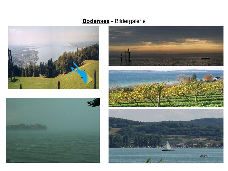 Bodensee - Bildergalerie
