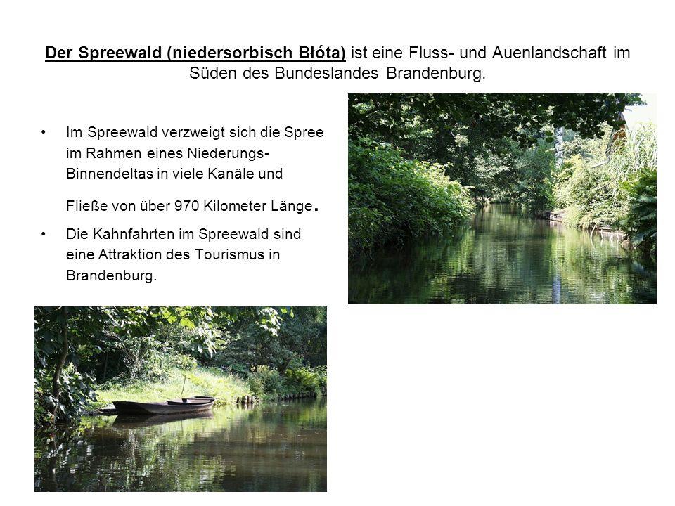 Der Spreewald (niedersorbisch Błóta) ist eine Fluss- und Auenlandschaft im Süden des Bundeslandes Brandenburg.