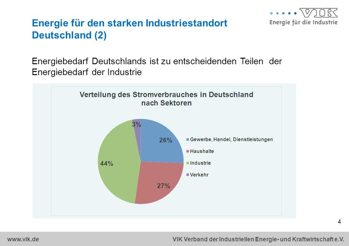 Energie für den starken Industriestandort Deutschland (2)