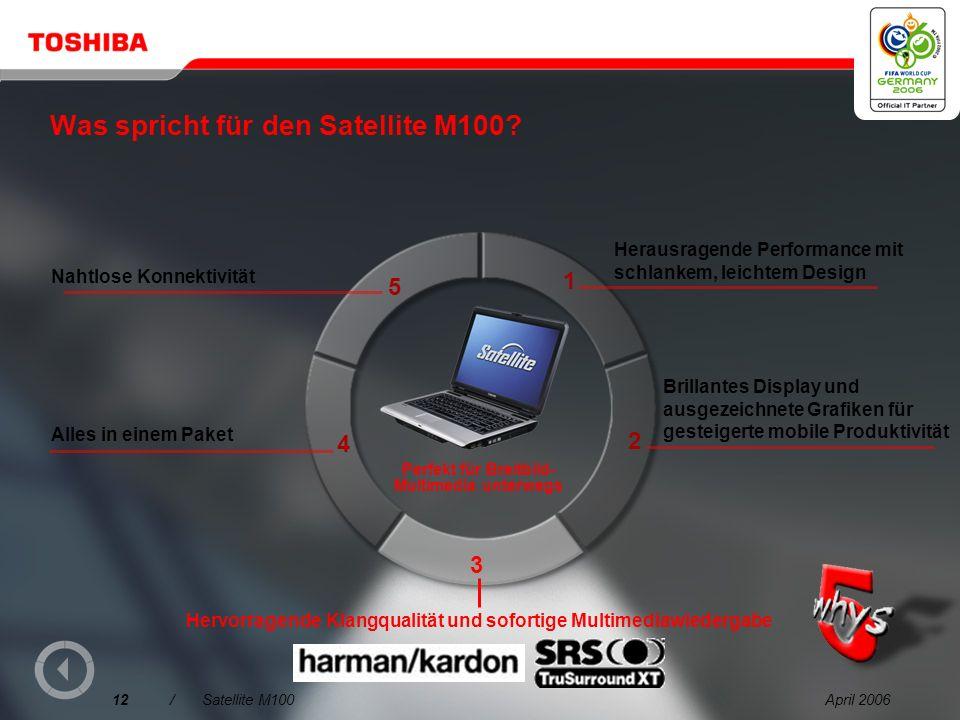 Was spricht für den Satellite M100