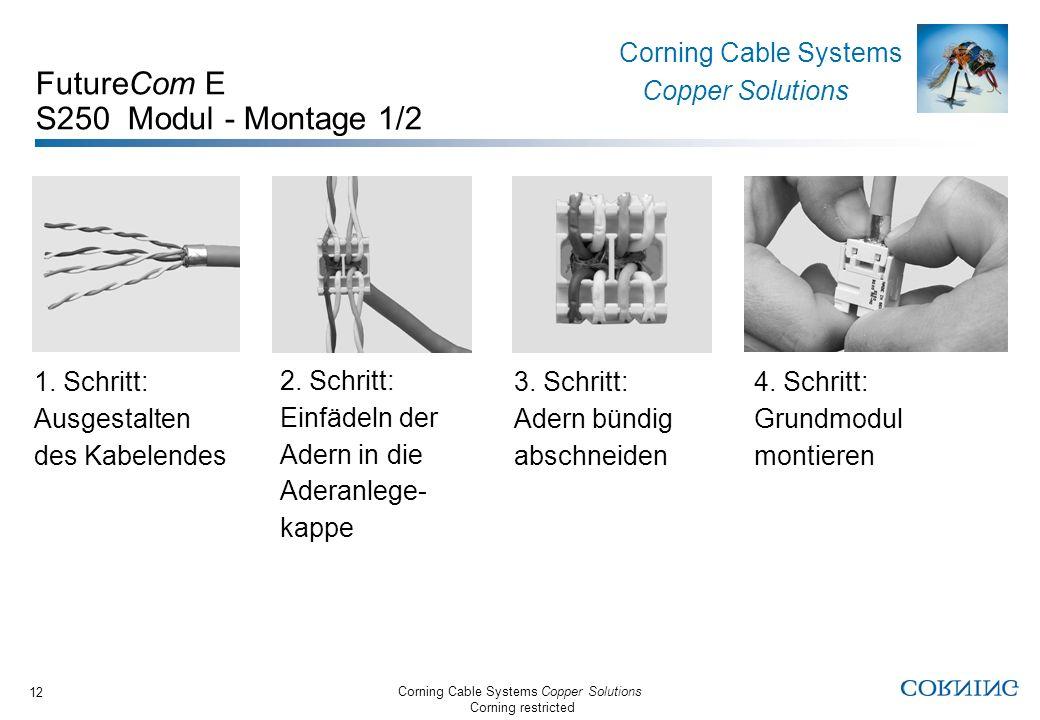 FutureCom E S250 Modul - Montage 1/2