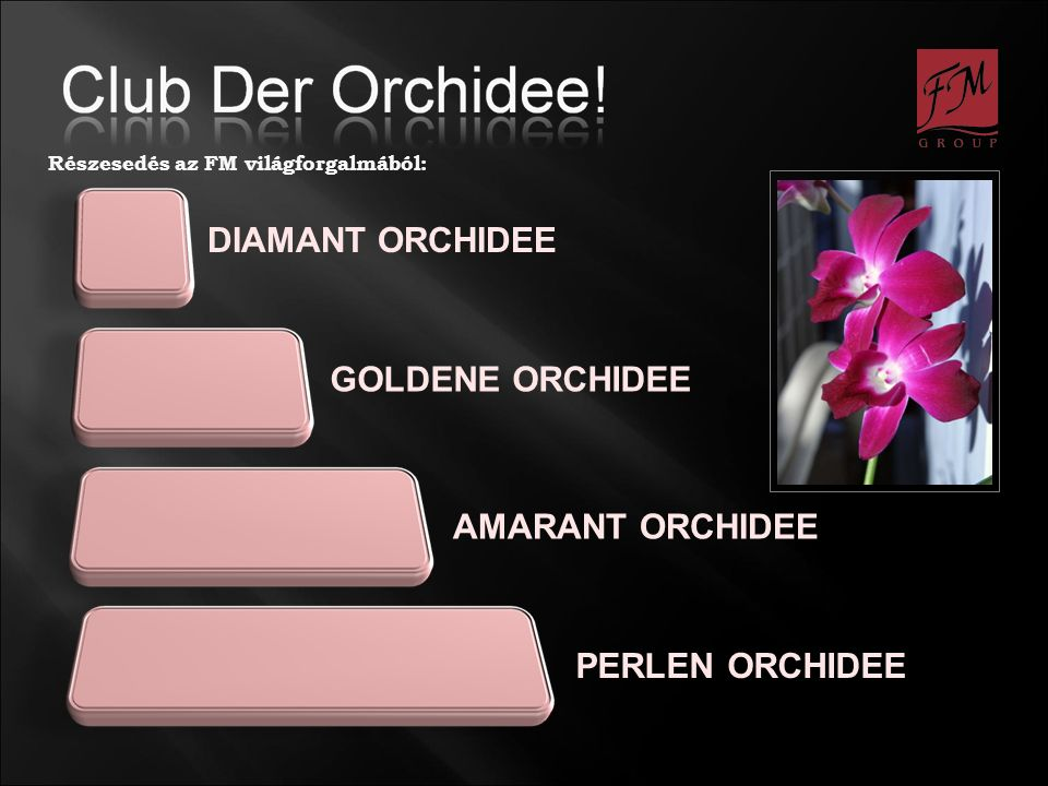 DIAMANT ORCHIDEE GOLDENE ORCHIDEE AMARANT ORCHIDEE PERLEN ORCHIDEE