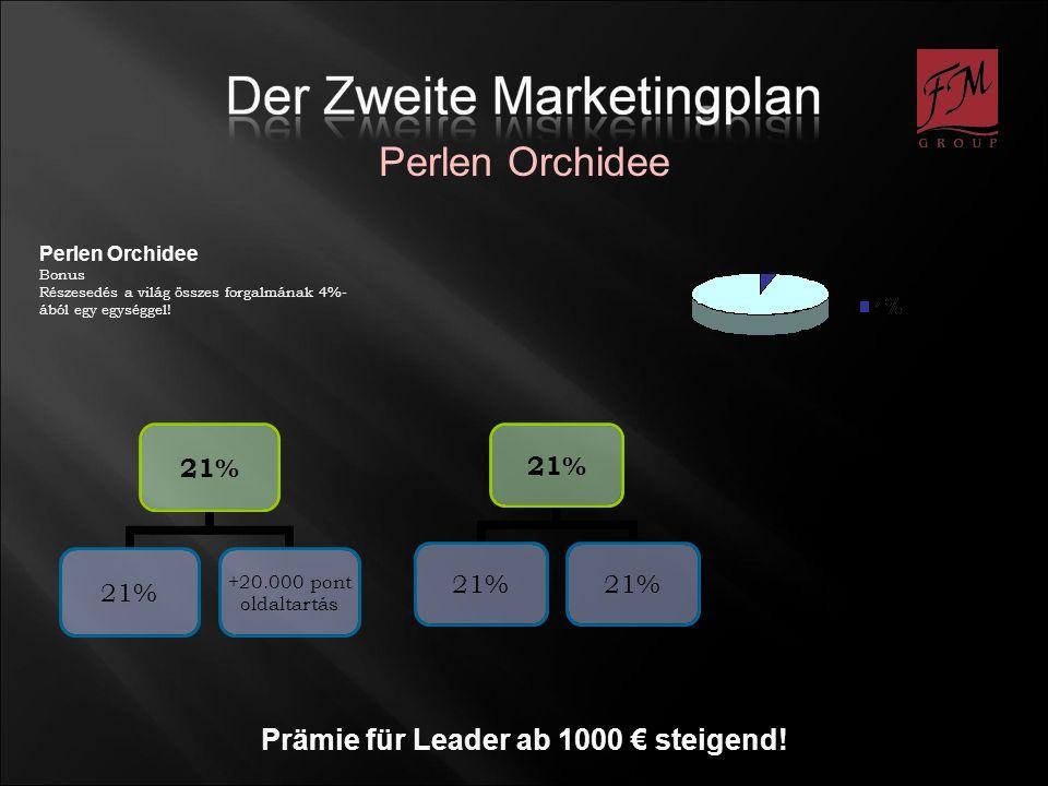 Prämie für Leader ab 1000 € steigend!
