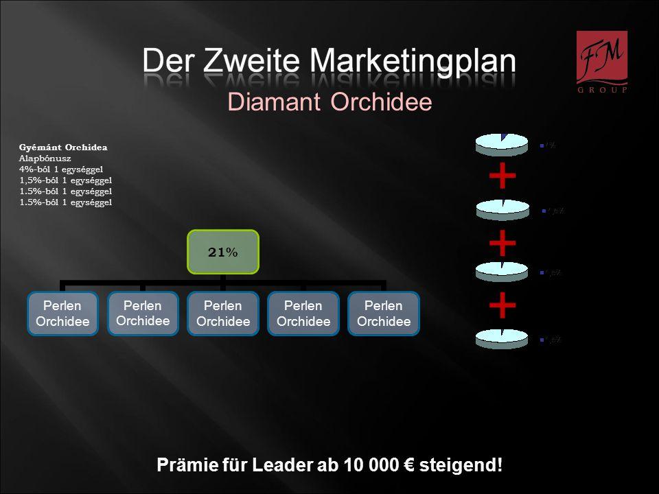 Prämie für Leader ab 10 000 € steigend!