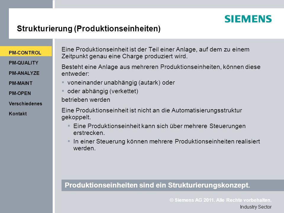 Strukturierung (Produktionseinheiten)