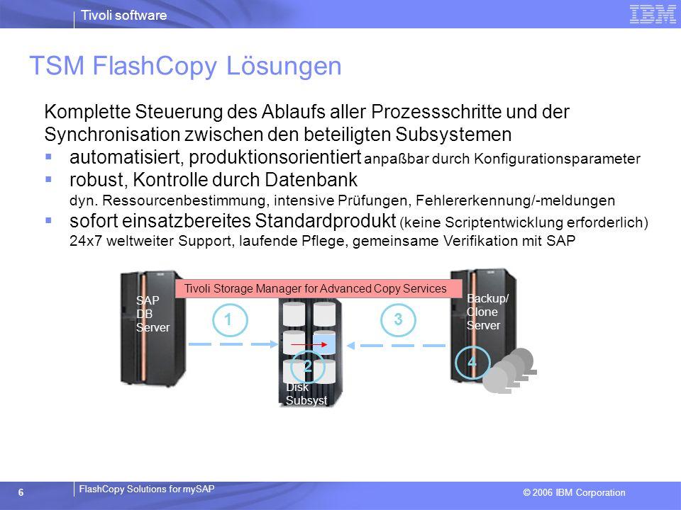 TSM FlashCopy Lösungen