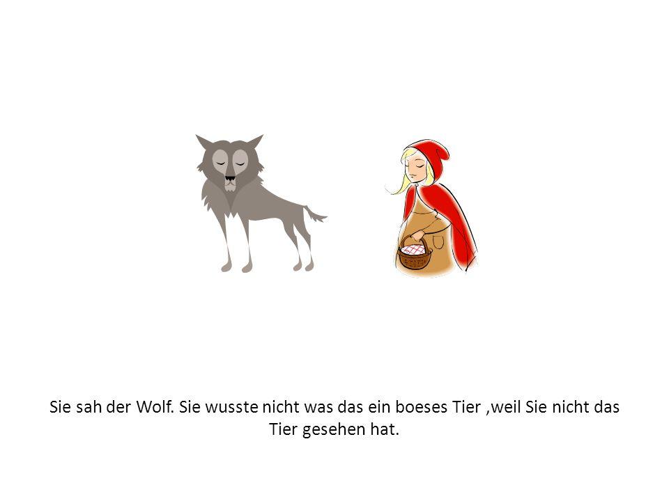 Sie sah der Wolf. Sie wusste nicht was das ein boeses Tier ,weil Sie nicht das Tier gesehen hat.