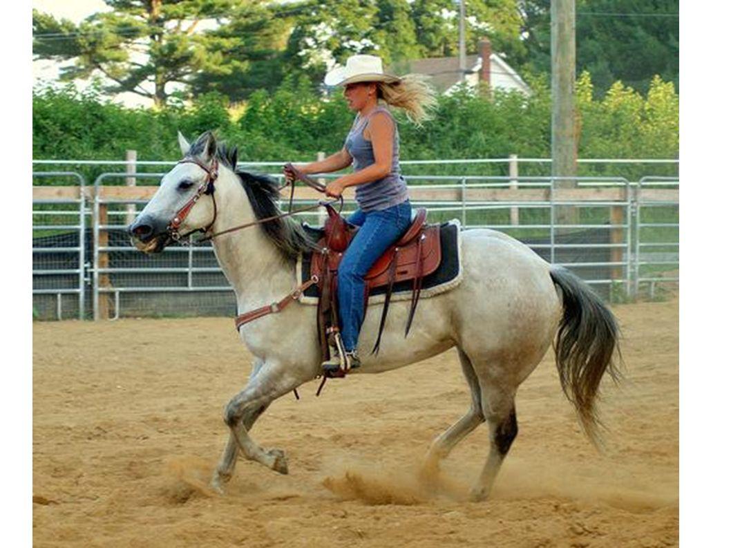 Viele Mädchen reiten sehr gut.