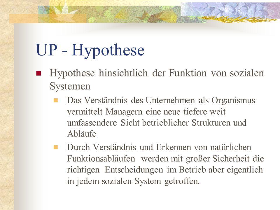 UP - Hypothese Hypothese hinsichtlich der Funktion von sozialen Systemen.