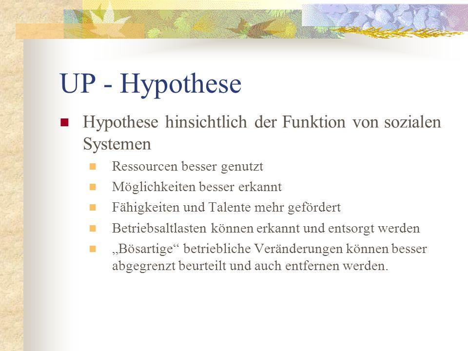UP - Hypothese Hypothese hinsichtlich der Funktion von sozialen Systemen. Ressourcen besser genutzt.
