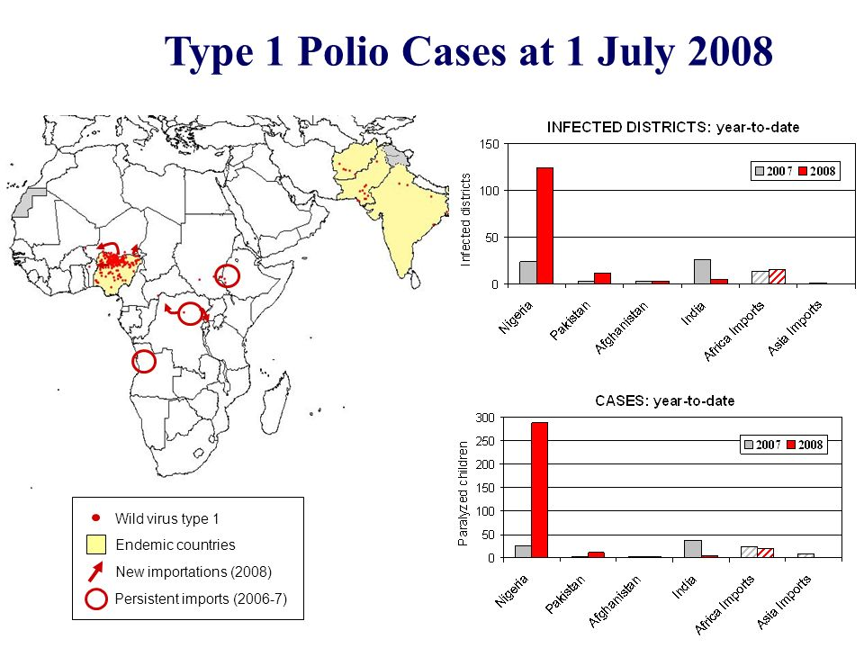 Type 1 Polio Cases at 1 July 2008