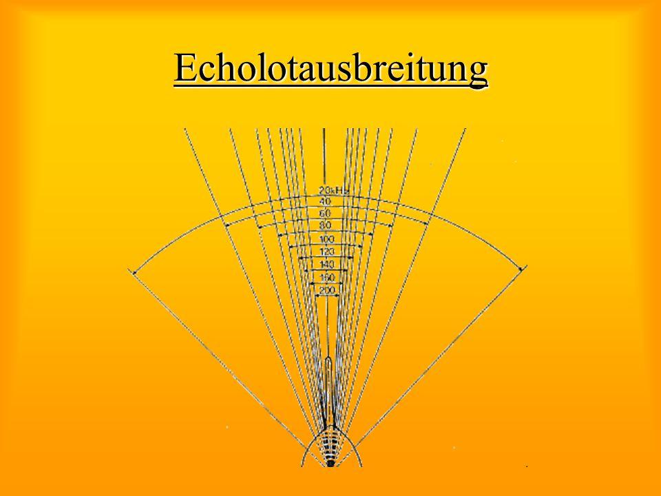 Echolotausbreitung
